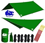 "Chill Gorilla 10x10 Hammock Rain Fly Camping Tarp. Ripstop Nylon. 170"" Centerline. Stakes, Ropes & Tensioners Included. Camping Gear & Accessories. Perfect Hammock Tent. Green"