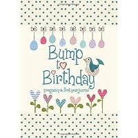Bump to Birthday, Pregnancy & First Year Journal (Parent & Child)