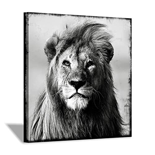 Lion Head Wall Art Print: Gray Wild Picture Painting on Wrapped Canvas for Decor in Black & White(12''x12'') 12' Black & White Framed