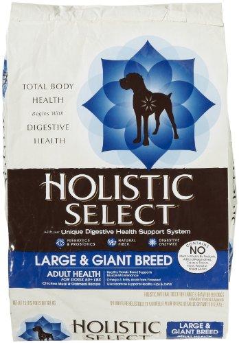 Wellpet 634706 Holistic Select Lg-Giant Breed Dog 15
