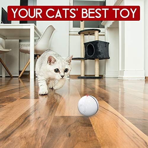 DELOMO Smart Interactive Cat Toy Ball, Automatic Rolling Ball, USB Rechargeable Cat Light Toy, 360 Degree Self Rotating Ball with Spinning Light, 2019 Upgraded Cat Exercise Chaser Toy 4