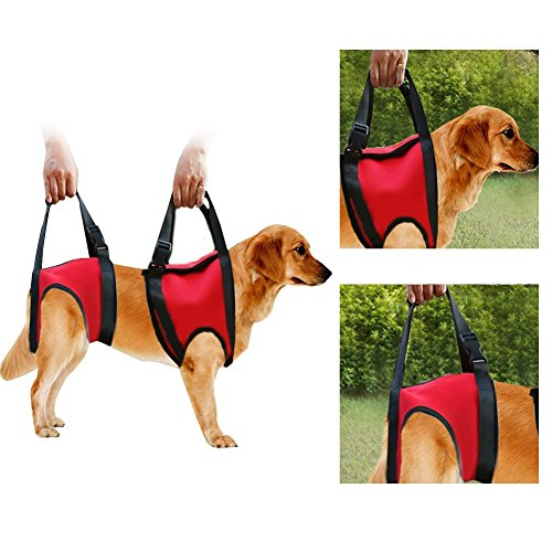 Arnés de soporte para perros,Pet Walking Ayuda Lifting Pulling Vest Sling,soporte y rehabilitación,para piernas traseras…