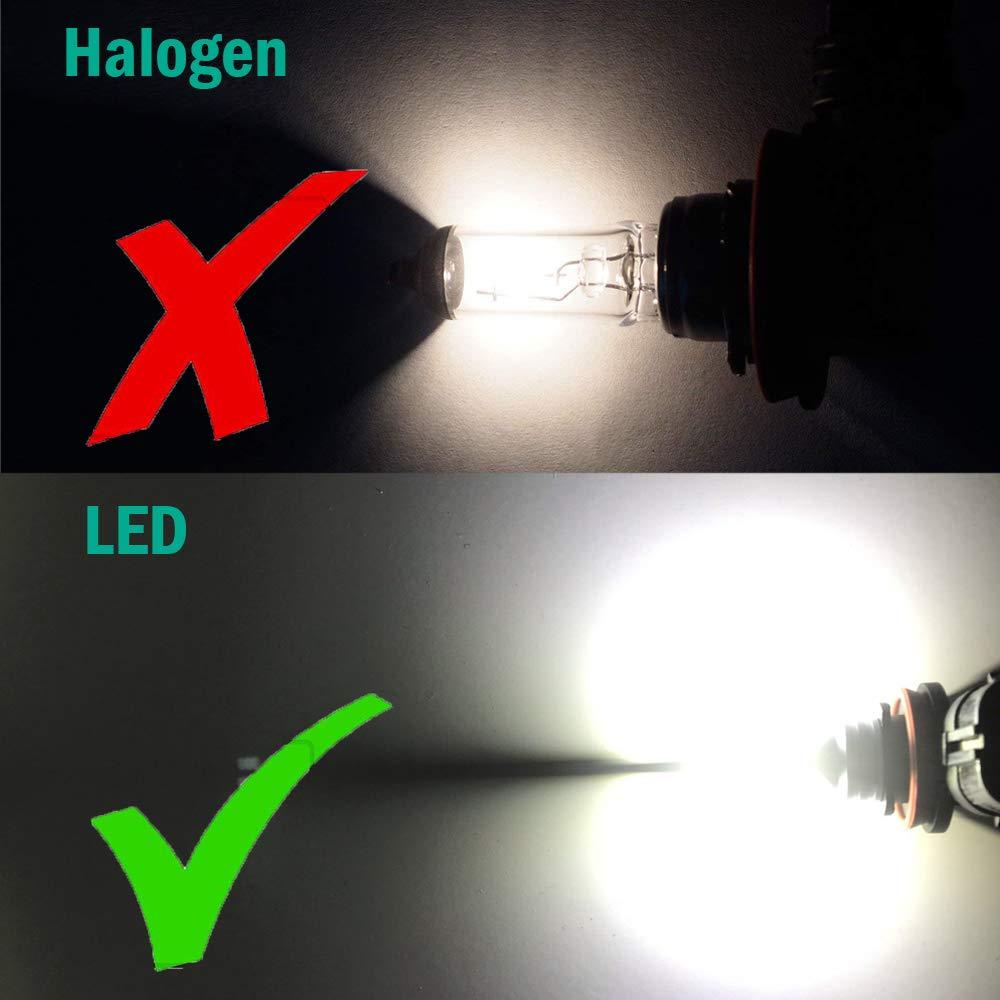 2Pcs Super Bright H11 H8 LED Bulb 6000K Cool White H16 LED Fog Light Bulbs for DRL or Fog Lights,6 High Power Y11 CSP