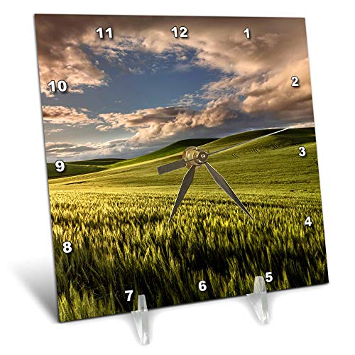 (3dRose Danita Delimont - Farms - Rolling Hills of Wheat, Palouse Region of Eastern Washington State. - 6x6 Desk Clock (dc_315083_1))