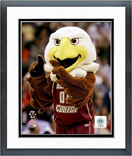 Boston College Eagles NCAA Team Mascot Photo 12.5