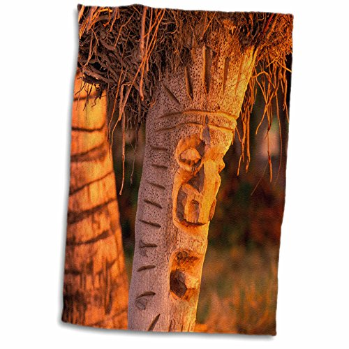 3D Rose Coconut Palm Carved into Tikis Hawaii-Us12 Dpb002...
