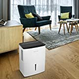 Frigidaire, White 35-Pint Dehumidifier with