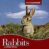 Rabbits, Melissa Stewart, 0761425284