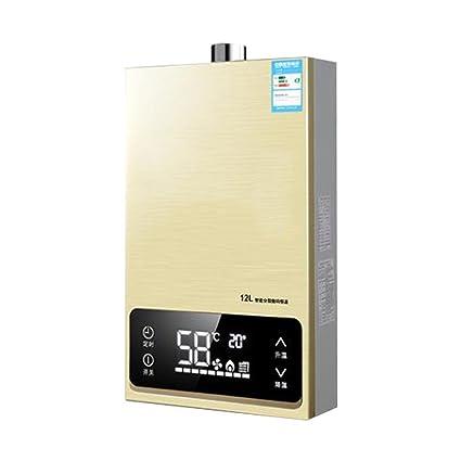 Calentador de agua portátil portátil de gas natural, calentador de agua sin tanque de propano