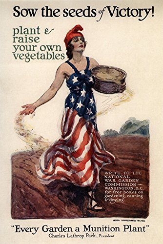 Sow the Seeds of Victory Plant Raise Vegetables Garden a Munition Plant Patriotic American USA US War Vintage Poster Repro 16