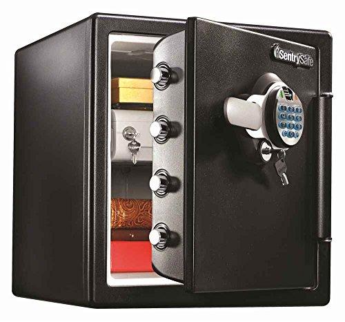 Fire Water Resistant Biometric Digital