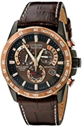 Citizen Men's AT4006-06X  Stainless Steel Eco-Drive Watch with Leather Band