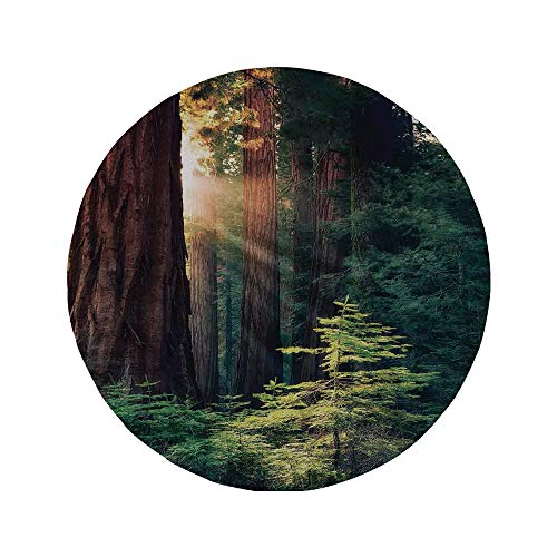 (Non-Slip Rubber Round Mouse Pad,National Parks Home Decor,Morning Sunlight in Wilderness Yosemite Sierra Nevada Nature Art,Green Brown,7.87