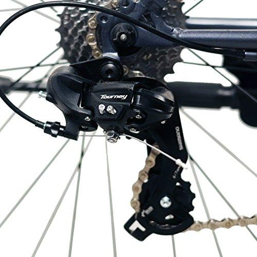 Solomone Cavalli Lightweight Classic Sports 8 Speed 700C Medium Road Bicycle Bike w/Shimano Derailleur by Solomone Cavalli (Image #8)