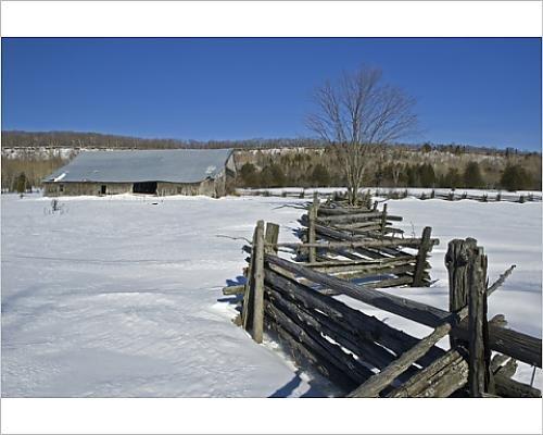 wooden split rail fence - 7