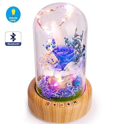SWEETIME Rose led Bottle Lamp Real Enchanted Rose in Glass Dome, Forever Preserved Rose Flower Night Light, Gift for Her in Mother's Day, Birthday (Bluetooth Speaker & Blue -