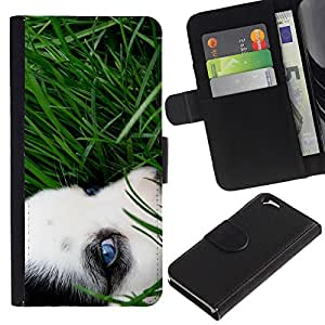 Be Good Phone Accessory // Caso del tirón Billetera de Cuero Titular de la tarjeta Carcasa Funda de Protección para Apple Iphone 6 4.7 // Siberian Husky Eye Grass Summer