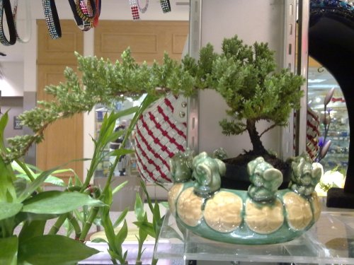 012546312554 - Dentyne Chewing Gum Peppermint carousel main 6