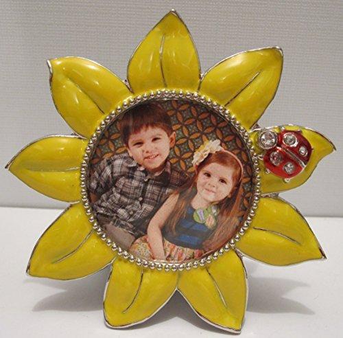 Sunflower Frame, 2