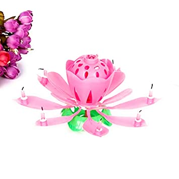 Niks Lotus Shaped Musical Rotating Candles Pack Of 1 Amazonin Toys Games