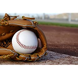 Wallmonkeys Baseball Glove Baseball Field Wall Mural Peel and Stick Graphic (30 in W x 20 in H) WM114384