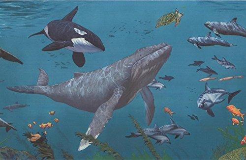 (Sharks Whales Underwater Nature Aegean Blue Wallpaper Border Retro Design, Roll 15' x 9