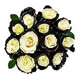 FRESH Tinted Roses  Black and White  25 stems (Jupiter Rose) Magnaflor - XXL Blooms  Bunch  10-12 days vase Life