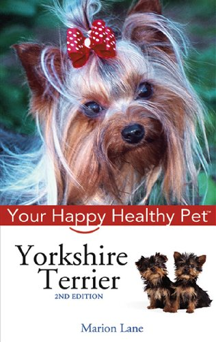 Yorkshire Terrier: Your Happy Healthy Pet Yorkshire Terriers Life