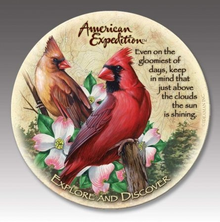 (4 American Expedition Stone Coasters Cardinal)