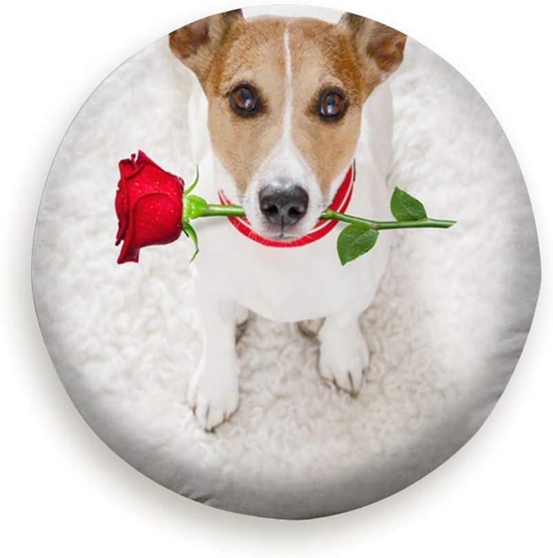 Sunwd Ersatzradabdeckungen Jack Russel Dog Love Happy Valentines Animals Holidays Universal Spare Tire Type Cover Wheel Covers