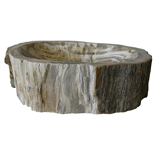 Novatto Petrified Fossil Wood Vessel Sink, Irregular Shape and Color