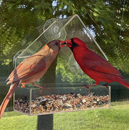 PREPARED4X Window Bird Feeders for Outside with Strong Suction Cups and Drain Holes | Small Comfort Feeder for Songbirds | 6x6x2.5 Inch (Two Way Mirror Bird Feeder)