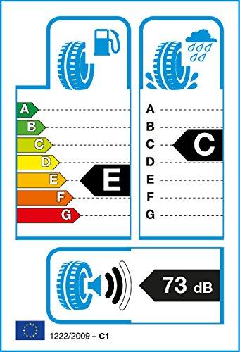 GENERAL TIRE EUROVAN A/S 365   - 195/70/15 104R - C/A/73dB - Pneu Toutes Saisons (Camionette) Continental Tires Spain S.L.U. 195/70 R15