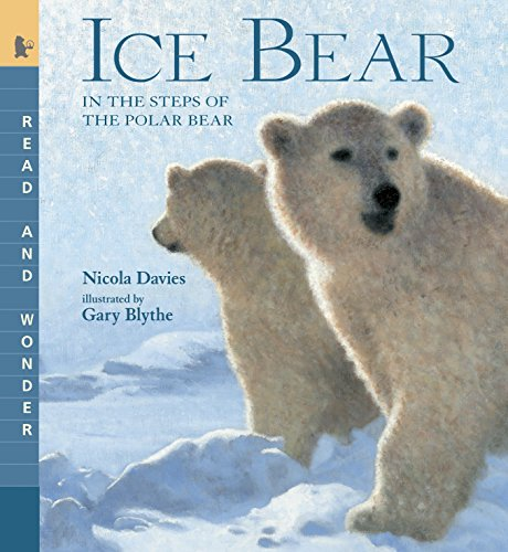 Ice Bear: Read and Wonder: In the Steps of the Polar Bear