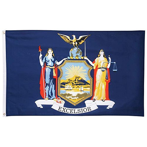 New 3x5 Polyester New York State Flag Ny Usa Empire Outdoor Banner - State York New Outlets
