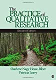 The Practice of Qualitative Research 2nd Edition