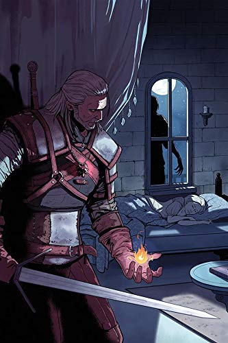Witcher: Of Flesh and Flame  #1 (The Witcher)