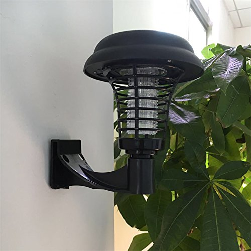 Solar Light And Insect Wacker - 5