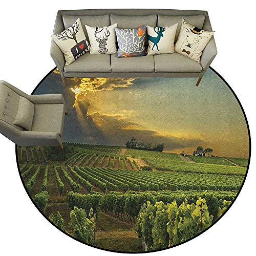 Winery,Carpet mat Sunset Over The Vineyards of The South of France Sunbeams Cloudscape Picture D78 Long Kitchen Mat Bath Carpet