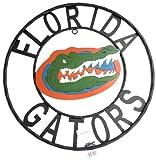 NCAA Florida Gators Collegiate Wrought Iron Wall Decor, Black/Orange and Blue, 23-Inch