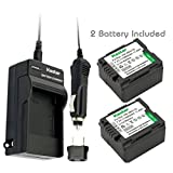 Kastar Battery (2-Pack) and Charger Kit for Panasonic VW-VBG130 work with Panasonic Lumix DMC-L10, HDC-HS250, HDC-HS300, HDC-HS700, HDC-SD10, HDC-SD600, HDC-SD700, HDC-SDT750, HDC-TM10, HDC-TM15, HDC-TM300, HDC-TM700, SDR-H80 Cameras
