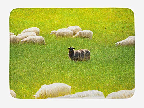 Nature Bath Mat, Black Sheep Between White Goats on Grass Field Meadow Animal Farm Landscape, Plush Bathroom Decor Mat with Non Slip Backing, 23.6 W X 15.7 W Inches, Fern Green Cream ()