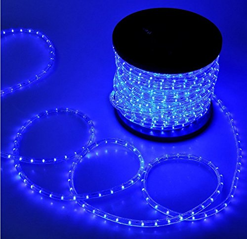 Grandey 32ft 50ft 65ft 98ft 150ft 295ft 2 wire led rope light indoor led rope light previous next aloadofball Gallery