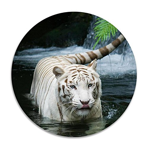 Reteone Animals Waterfalls Tigers Photo Anti-slip Coral Velvet Round Area Rugs Memory Foam Floor Carpets Mats 15.75 Inch Diameter Bedroom Rug Yoga Chair Mat Doormat (Ikea Rugs Edmonton)
