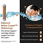 Eureka forbes Aquaguard Aura 7L Ro+Uv E-Boiling + Mtds Water Purifier with Active Copper and Mineral Guard Technology ,8…