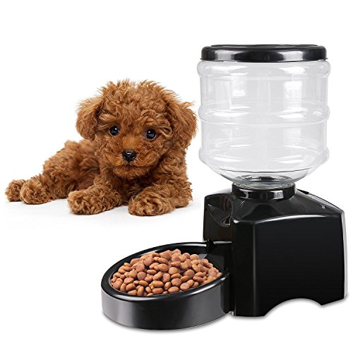 5.5 Liter Dry Food Automatic Pet Feeder with Voice Recorder and Timer Programmable for Dog and Cat by Cosway