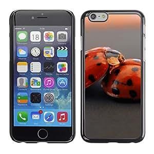 Carcasa Funda Case // Ladybug V0000186// iPhone 6 4.7