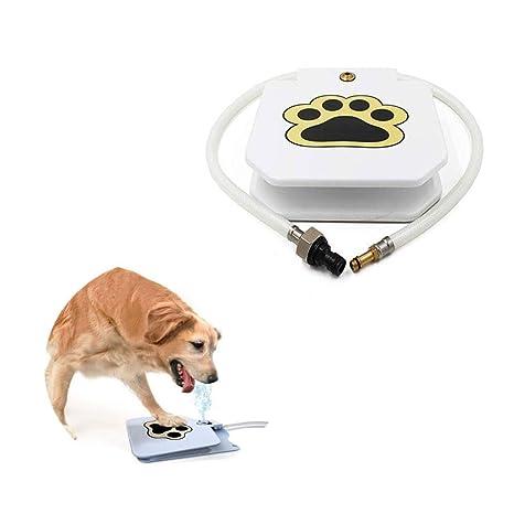 Amazon.com: Dispensador de agua ZYZ para mascotas, con pedal ...