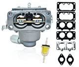 Karbay 791230 792295 New Replacement Carburetor with Gasket Kit for Briggs & Stratton 791230 792295 699709 499804 carb