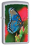 Butterfly Style1 Zippo Outdoor Indoor Windproof Lighter Free Custom Personalized Engraved Message Permanent Lifetime Engraving on Backside